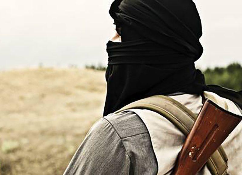 Jihadistische Netzwerke und die Diaspora